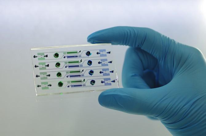 연구팀의 바이오칩은 세포의 미세 환경을 컴퓨터로 제어해 기존 세포 배양법에서는 할 수 없는 정량적인 자극을 줄 수 있어 분자 단위에서 세포 신호 경로의 수학적 매커니즘을 규명하는 데 큰 이점을 갖고 있다. - 서울대 제공